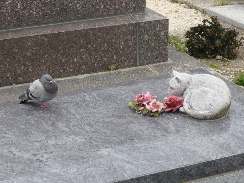 RESTONS DE MARBRE !_mfd, cimetière du Montparnasse 2008