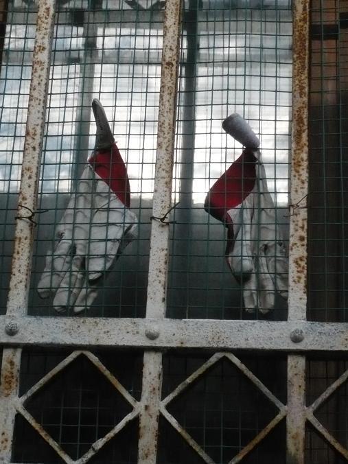 Prisons 7_mfd, Venise 2009