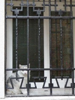 Prisons 2_mfd, Venise 2009
