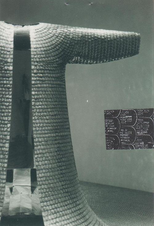 Mfd_ autoportrait avec Do Ho Suh_ VENISE, Biennale pavillon coréen  2001