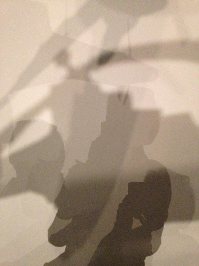 Mfd. Triple autophoto dans l'installation de H-J GEORGI (Paris, La Maison Rouge 2015)