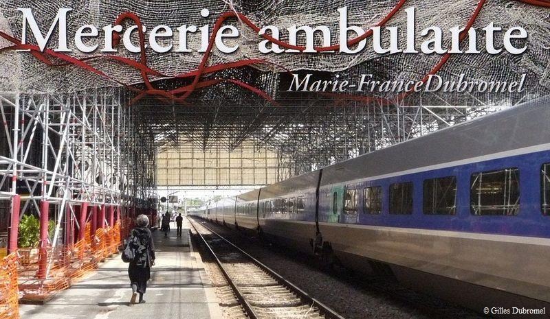 L'ambuleuse, mfd. Gare de La Rochelle.© Gilles Dubromel