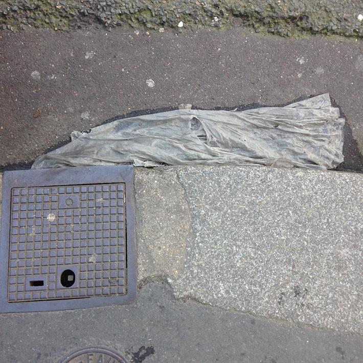 Coll. de pluie. rue  N-D des Champs 12 02 15