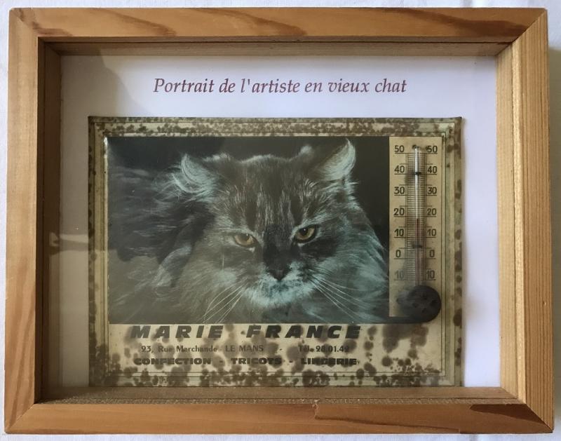 Mfd  portrait de l'artiste en vieux chat