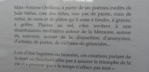 20 M.-A. ORELLANA