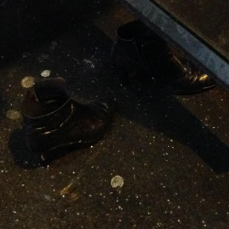 Les souliers de Cendrillon. Station de BUS, Mouton-Duvernet, le 29 01 2015