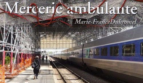 L'ambuleuse, mfd. Gare de La Rochelle. Photographie, Gilles Dubromel