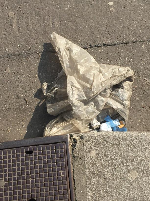 Collection de pluie. rue Linné 11 03 2016