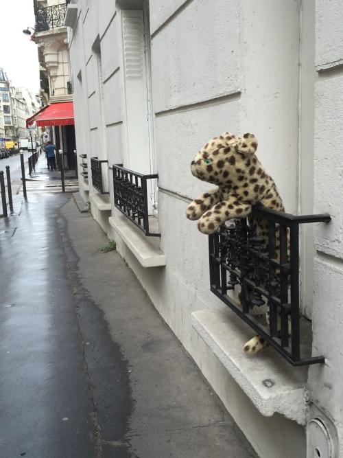 2016 08 04 PARIS, rue Liancourt