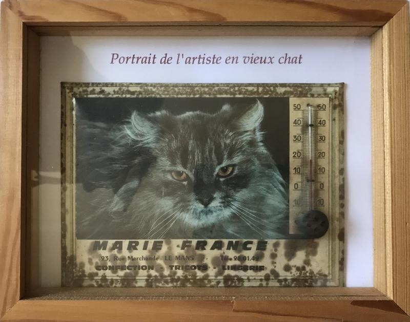PORTRAIT DE L'ARTISTE EN VIEUX CHAT mfd