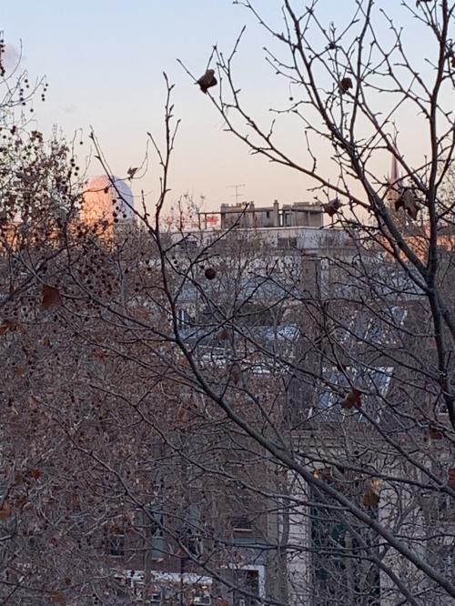 AIRE DE PARIS 15