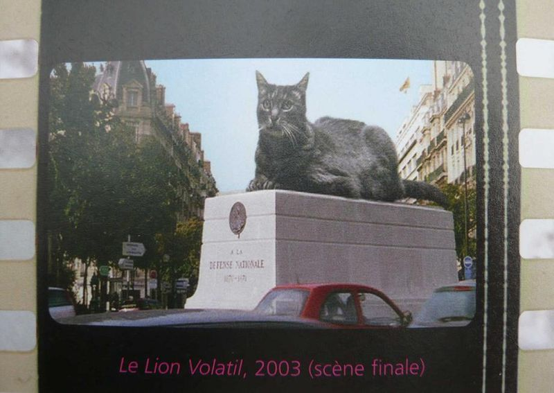 ZGOUGOU  Chatte d'enfer ( in Le lion volatil_A VARDA  2003)